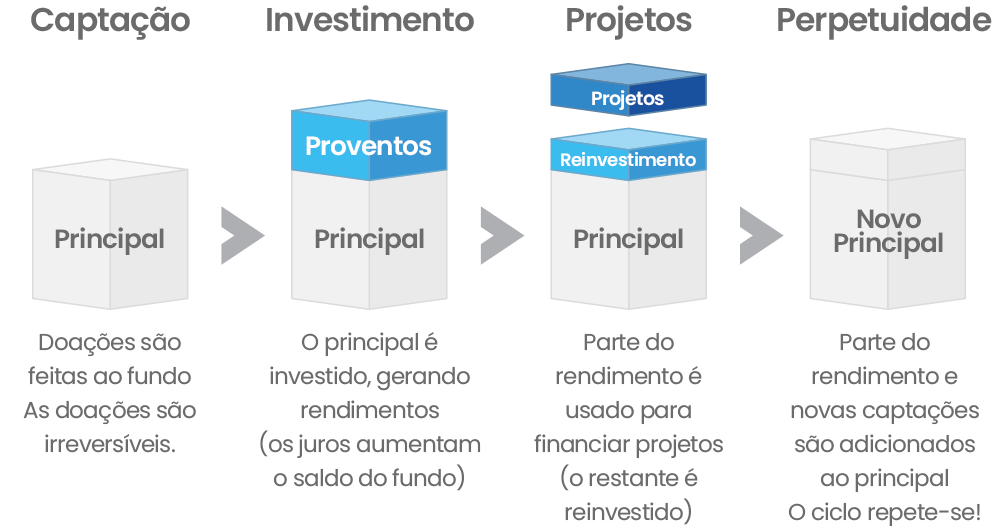 fundo_endowments2c